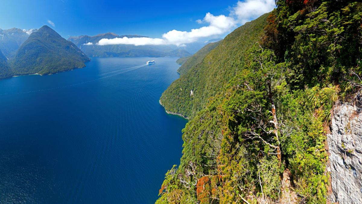 AS34-Fiords-Fiordland-Rob-Suisted-Medium
